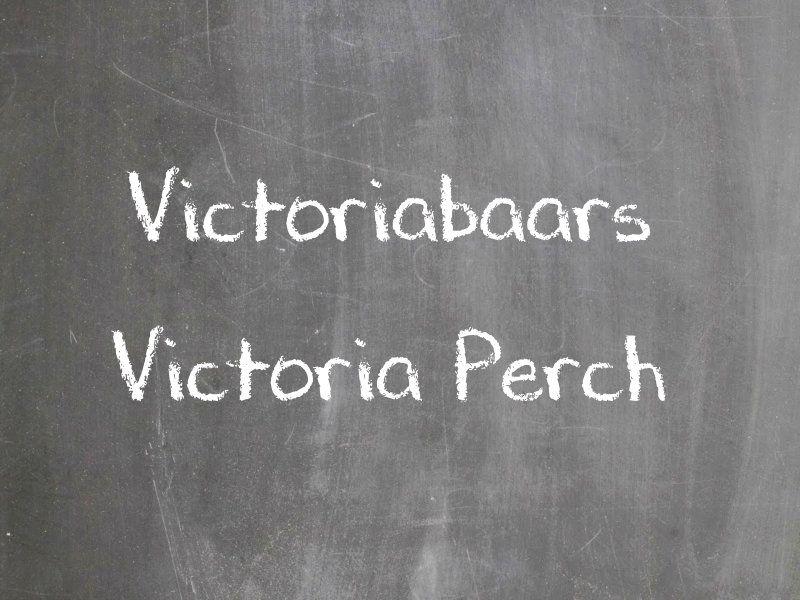 Victoriabaars
