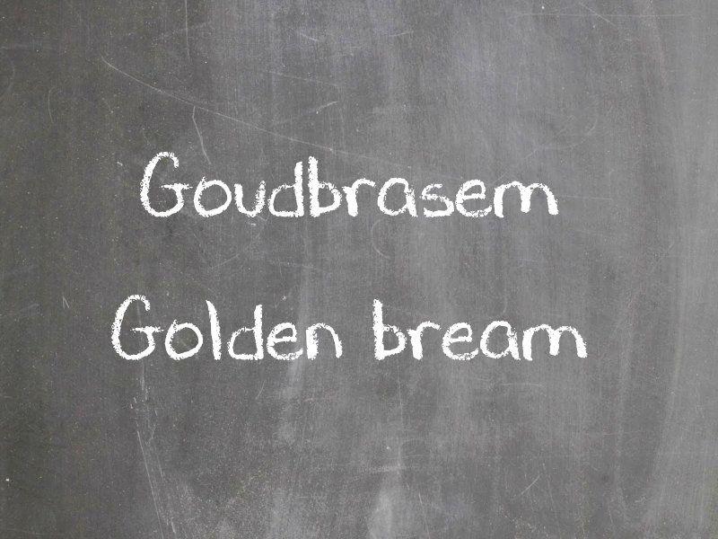 Goudbrasem
