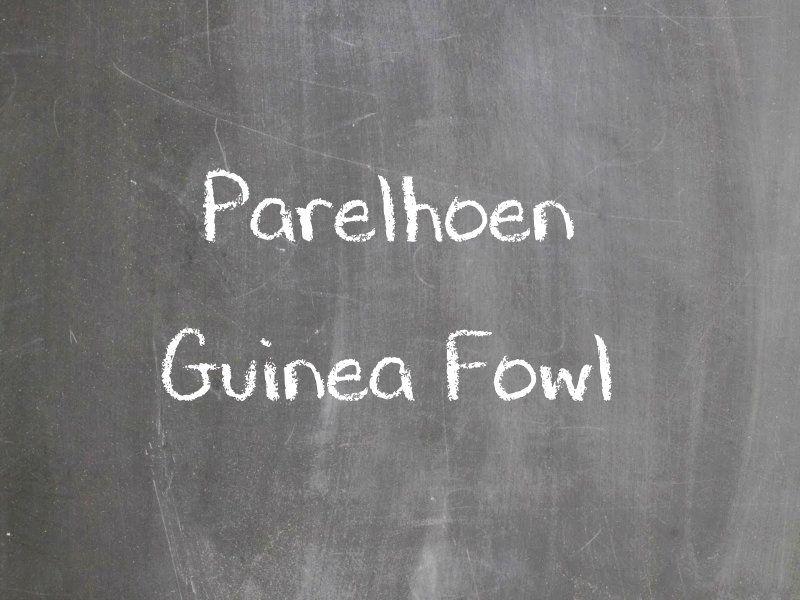 Parelhoen