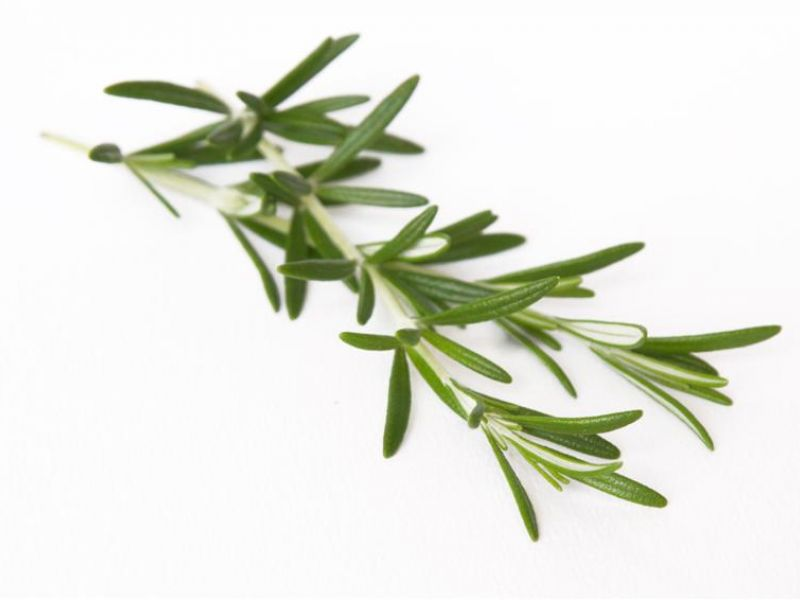 Rosemary-garlic marinade