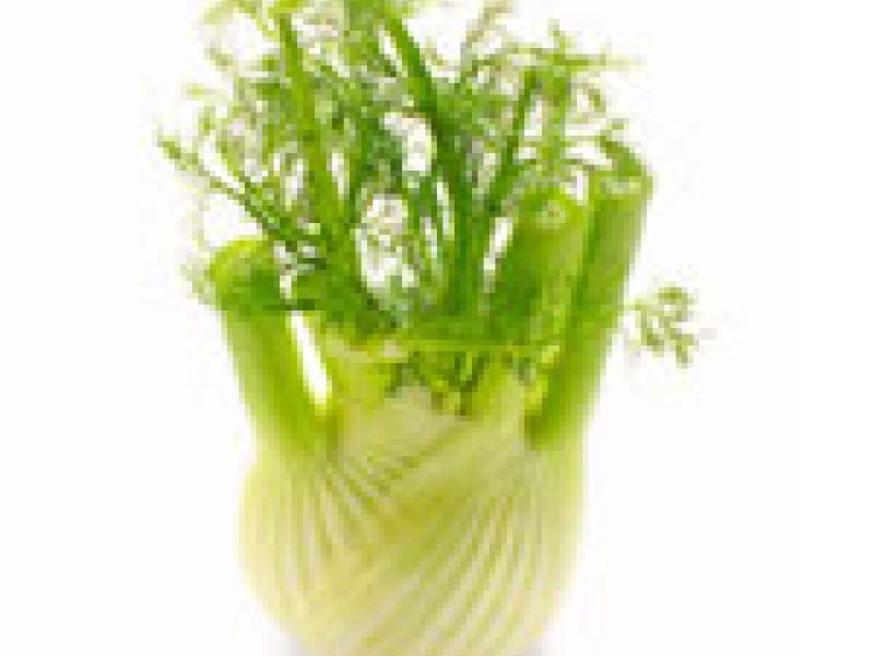 Fennel-orange salad