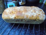Maïsbrood