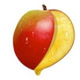 Konijnensaté's met sesam en mangodip