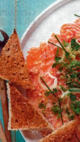 Ceviche van zalm, venkelslaatje en toast